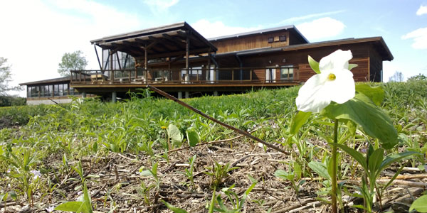 KVR Visitor Center with a trillium