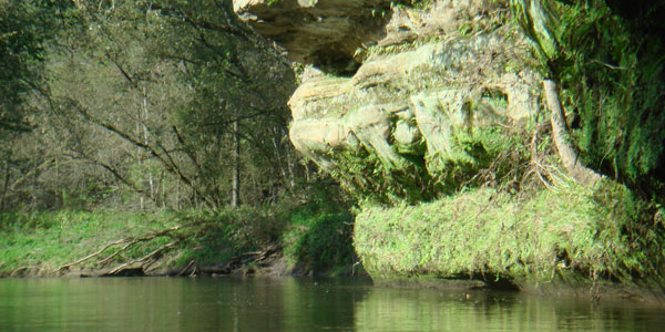 A rock cliff along the Kickapoo River